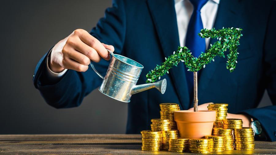 Hombre regando planta con monedas