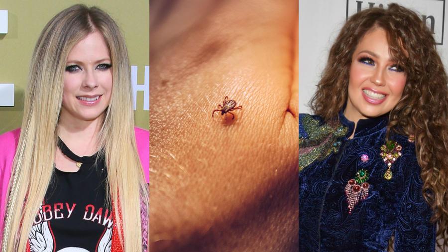 Avril Lavigne, Thalía, enfermedad de Lyme