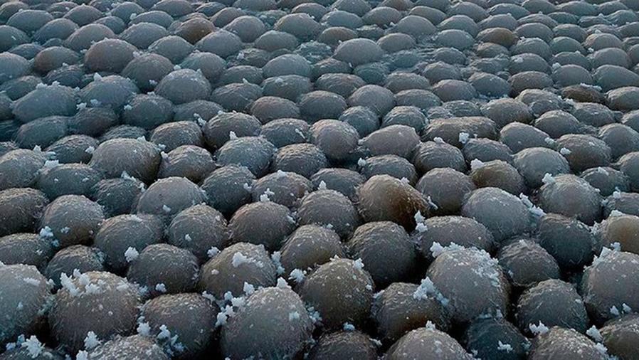 Estas extrañas esferas arribaron al golfo de Finlandia