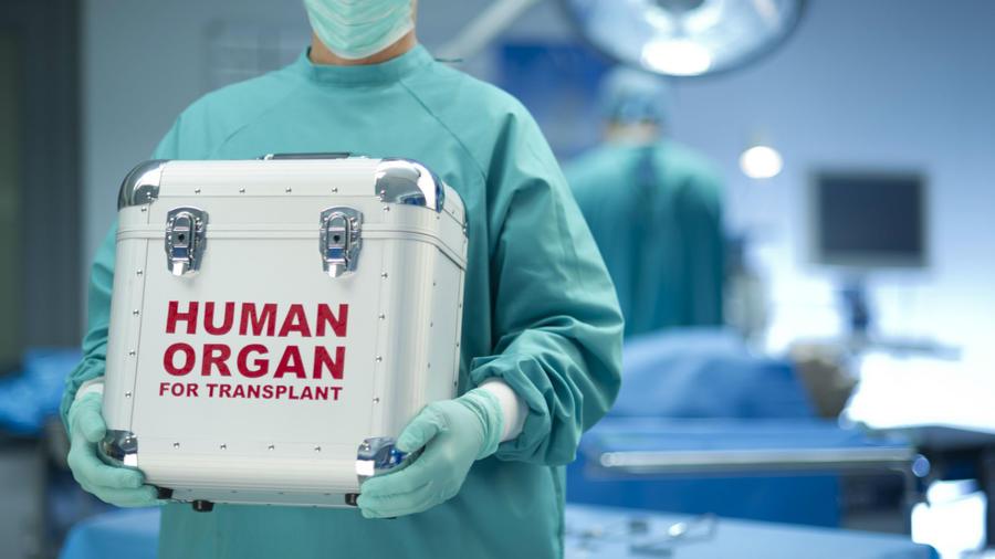 Corazón humano para trasplante