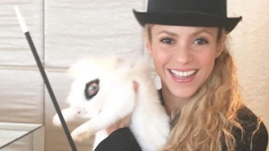 Shakira vestida de maga con un conejo