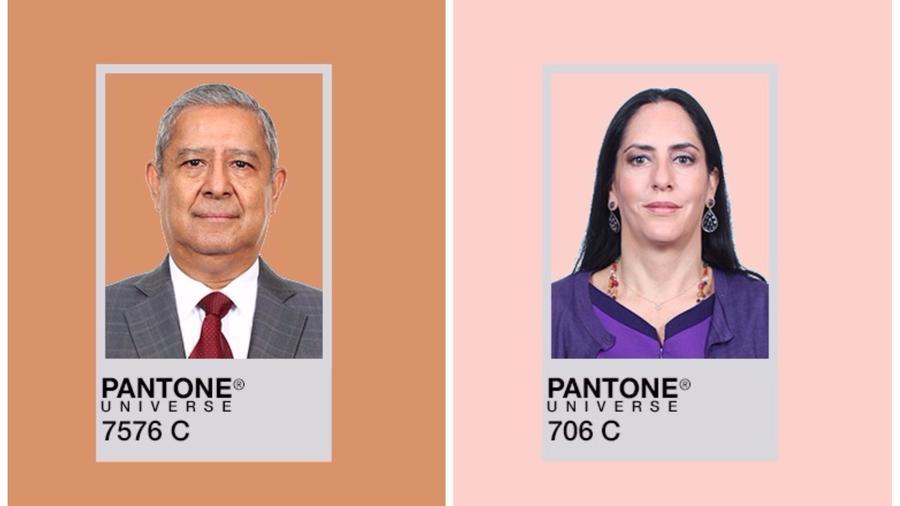 Estudian el tono de piel de los diputados en México