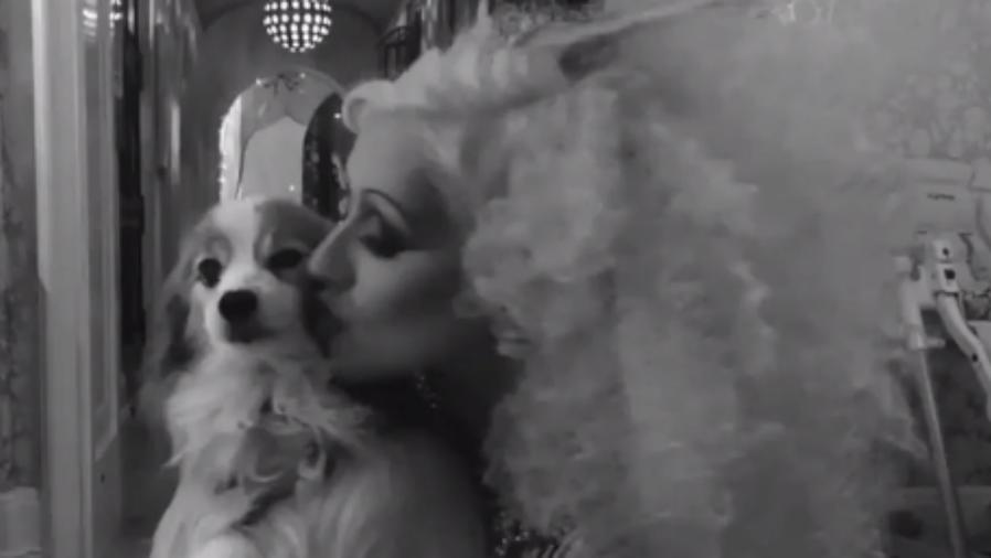 Christina Aguilera con su perrito Stinky