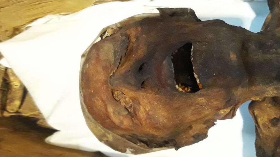 Descifran misterio de una momia que grita
