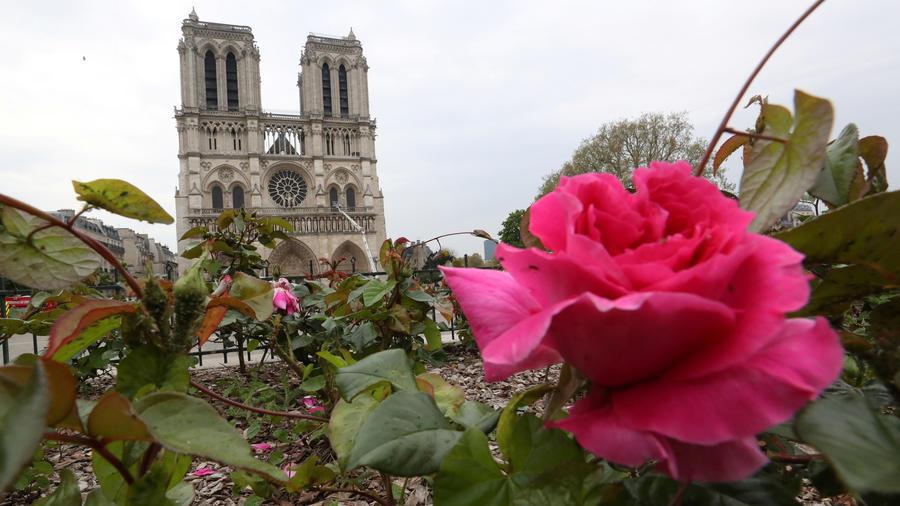 Vista de la catedral de Notre Dame en París después de colosal fuego