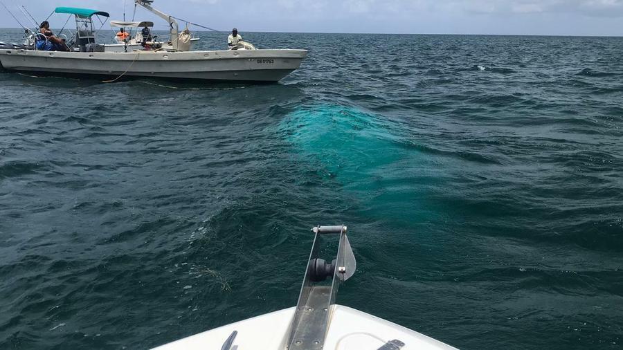 Fotografía donde un equipo de búsqueda localizó los restos del helicóptero donde viajaban Chris Cline, su hija y otras cinco personas que fallecieron