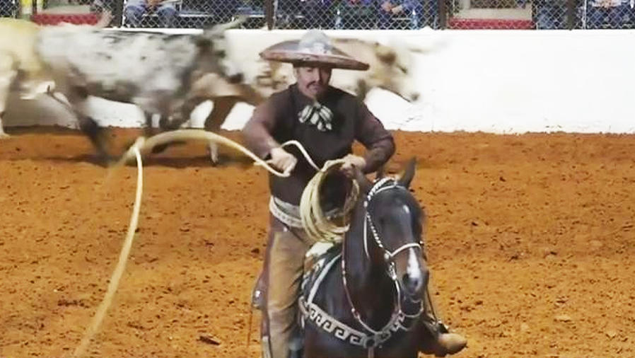 rodeo en forth worth
