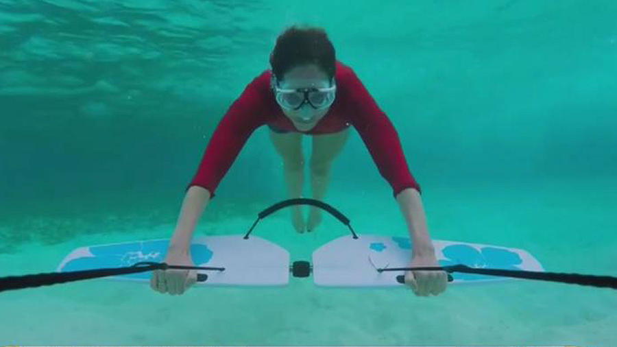 Fly under water o volar bajo el agua