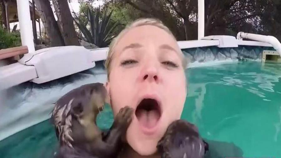 Te mostramos los videos más vistos en las redes sociales