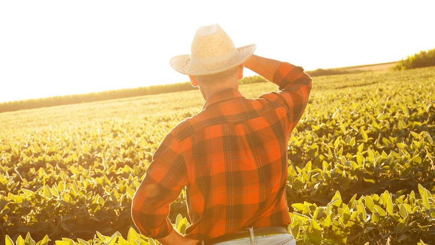 ley beneficia campesinos en california