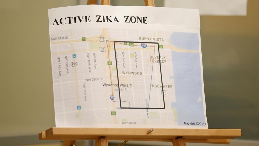 Inquietud sobre proliferación del Zika en Florida
