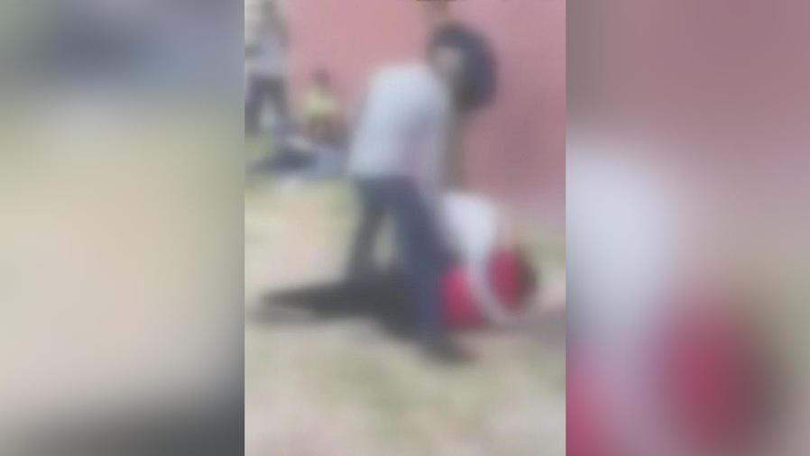 pelea estudiantil