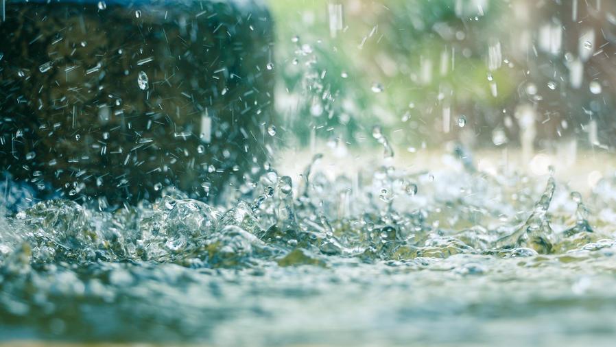 Lluvias ayudan a controlar incendios forestales en Florida