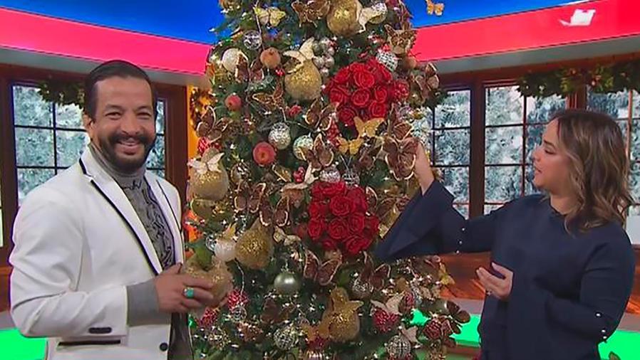 Un decorador nos explica cuáles son las decoraciones ideales para el árbol de Navidad