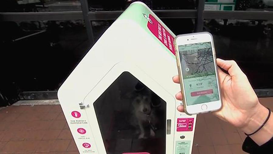 """""""Dog Parker"""", un sistema para cuidar a tu mascota mientras tú caminas por la ciudad"""