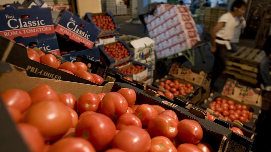 tomates frescos de México no podrán ingresar al país por los puentes internacionales