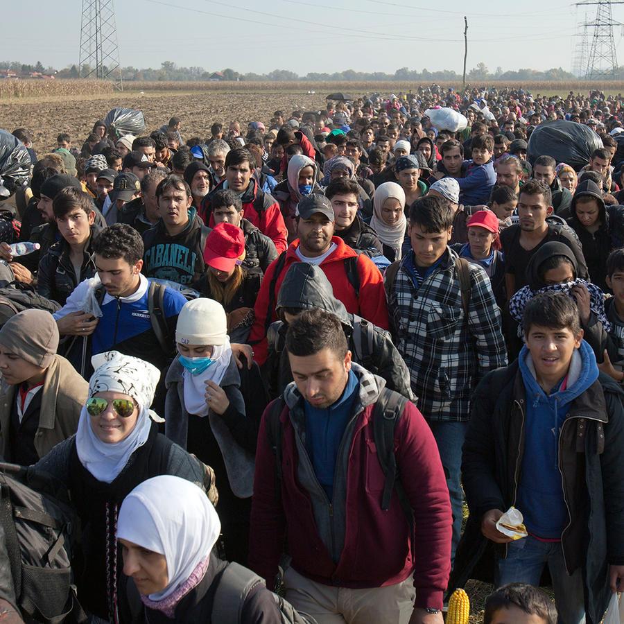 Migrantes caminando por un campo tras cruzar la frontera desde Croacia, en Rigonce, Eslovenia, el lunes 26 de octubre de 2015.