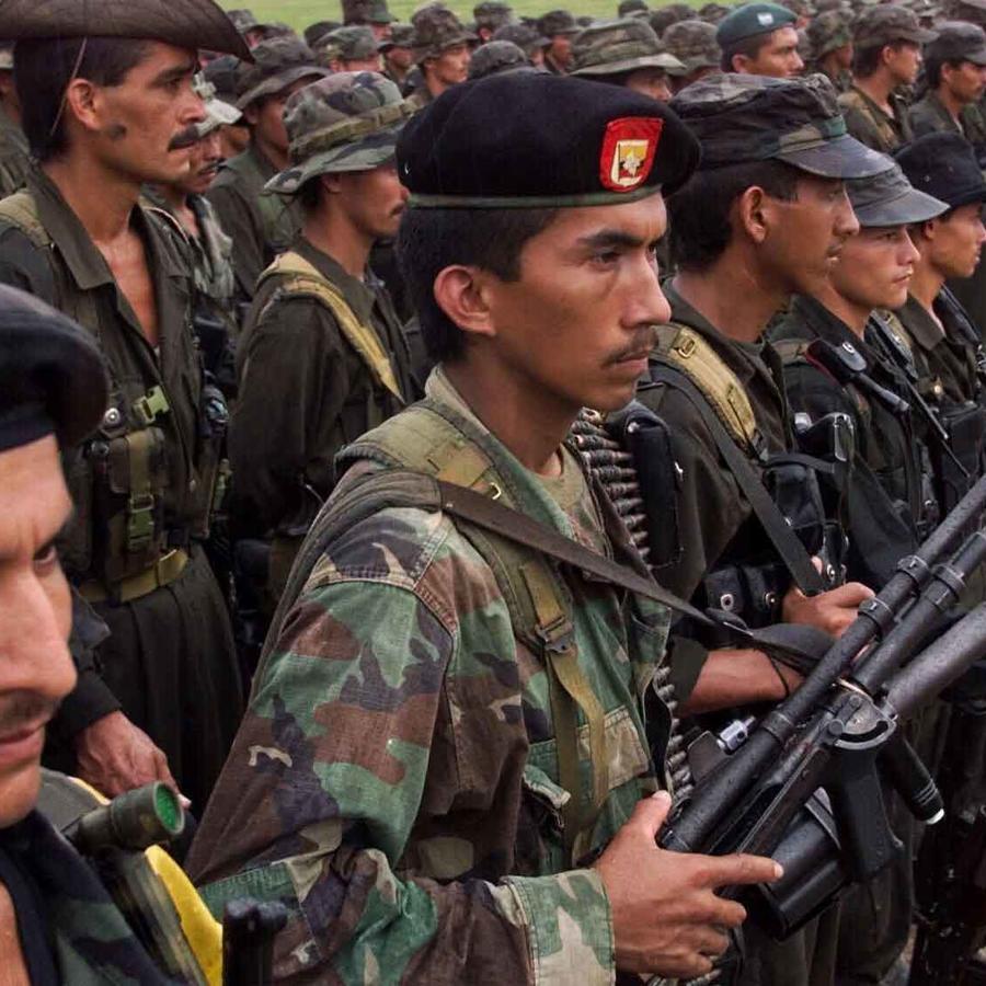 grupo guerrillero de colombia las farc