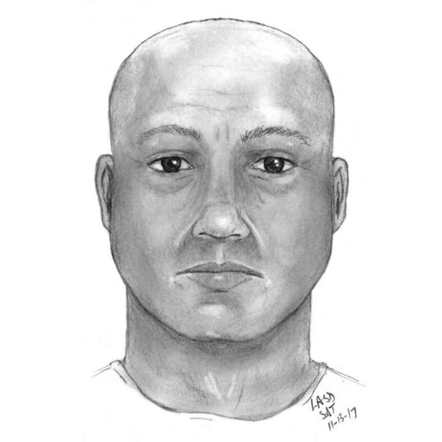 Esperan que el retrato hablado ayude a una rápida identificación y arresto.