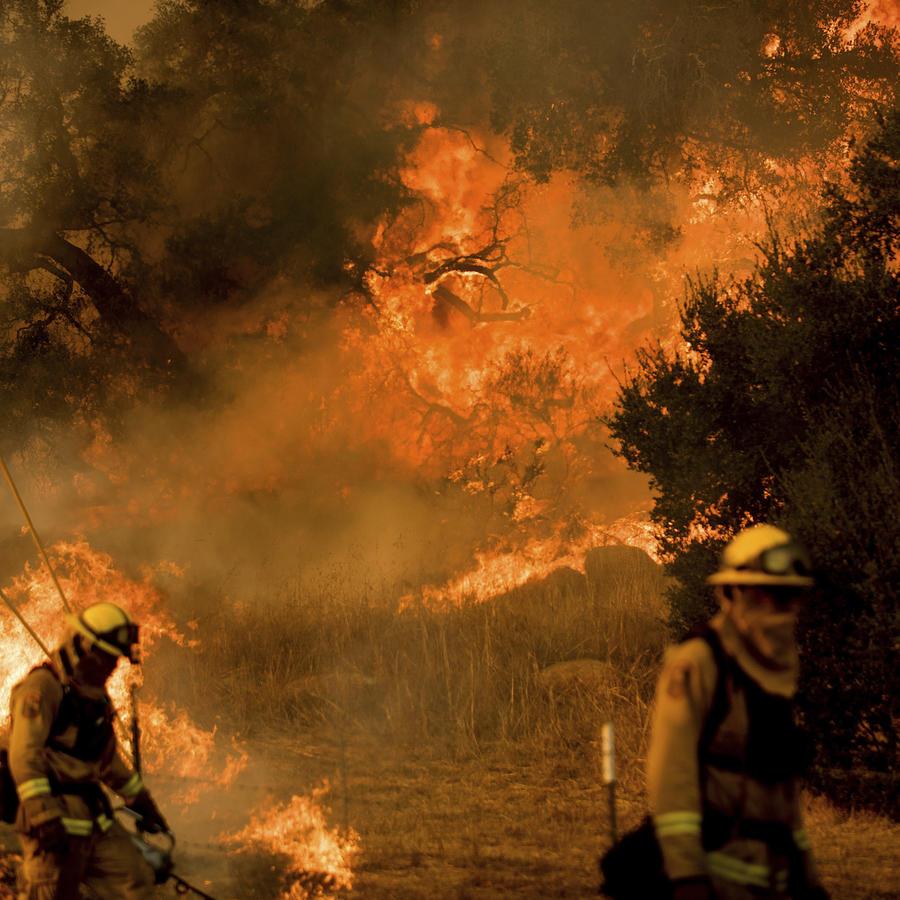 Bomberos combaten el fuego este sábado cerca de Ventura, California.