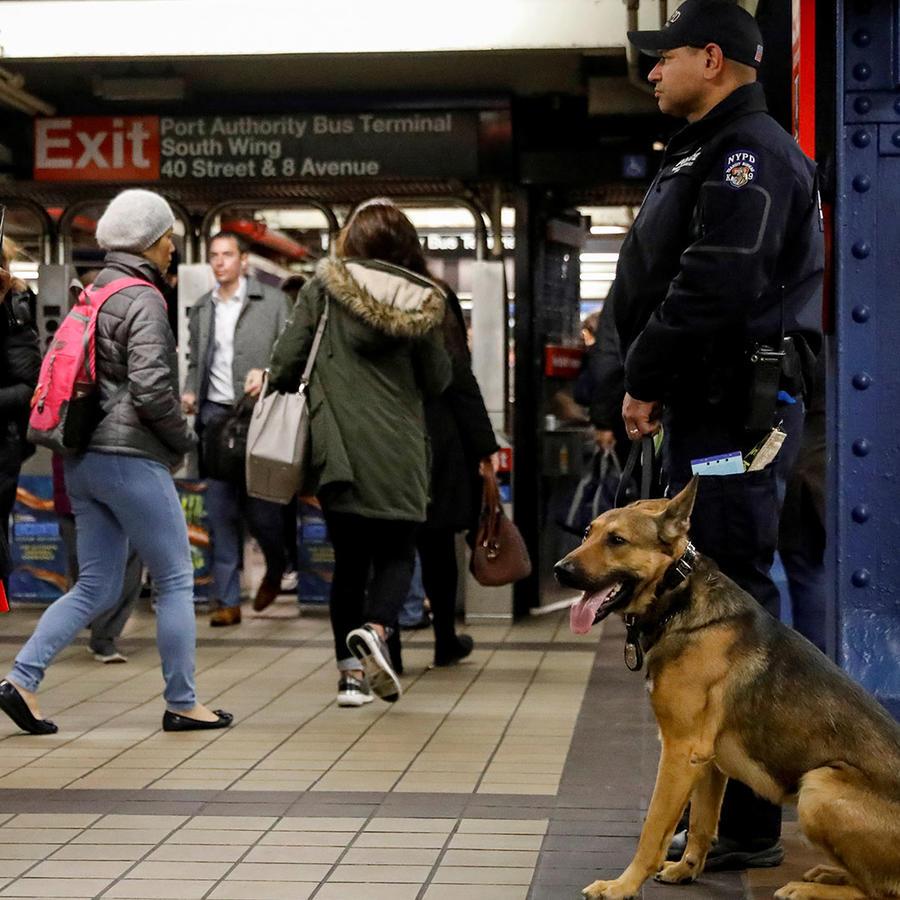 Un policía de Nueva York junto a un perro de la unidad canina vigilan un corredor del metro de la ciudad próximo al lugar en donde se produjo la detonación en plena hora punta este lunes 11 de diciembre de 2017.