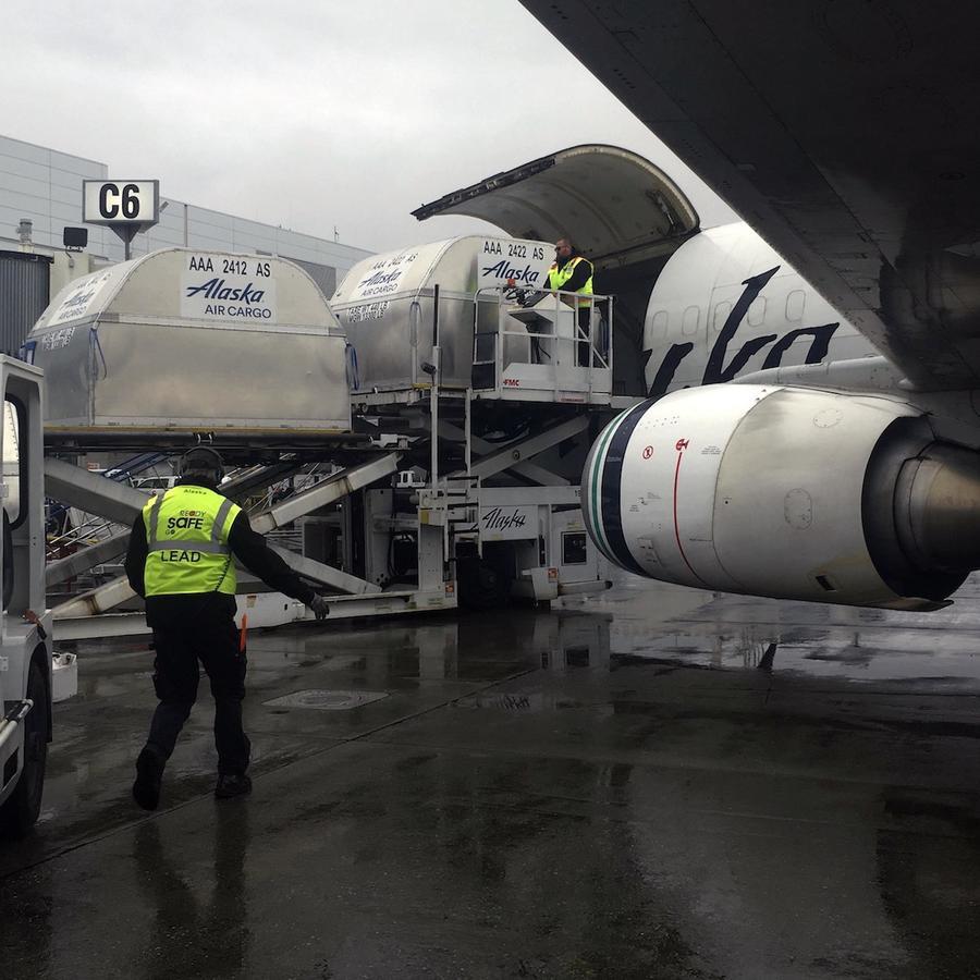 Un avión en el aeropuerto Ted Stevens de Anchorage en septiembre de 2017.