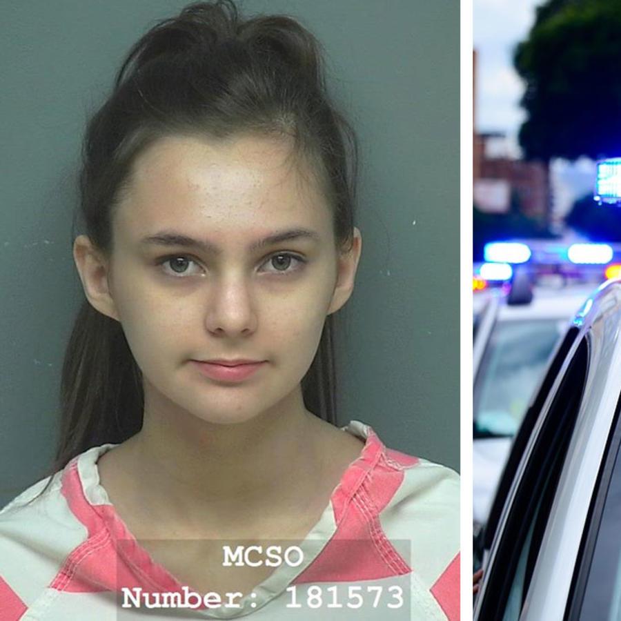 Susan Mize police photo