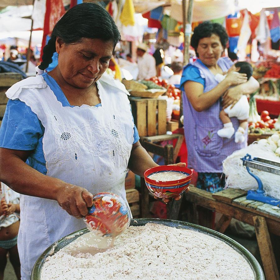 Woman preparing pulque, festival in Tlacola
