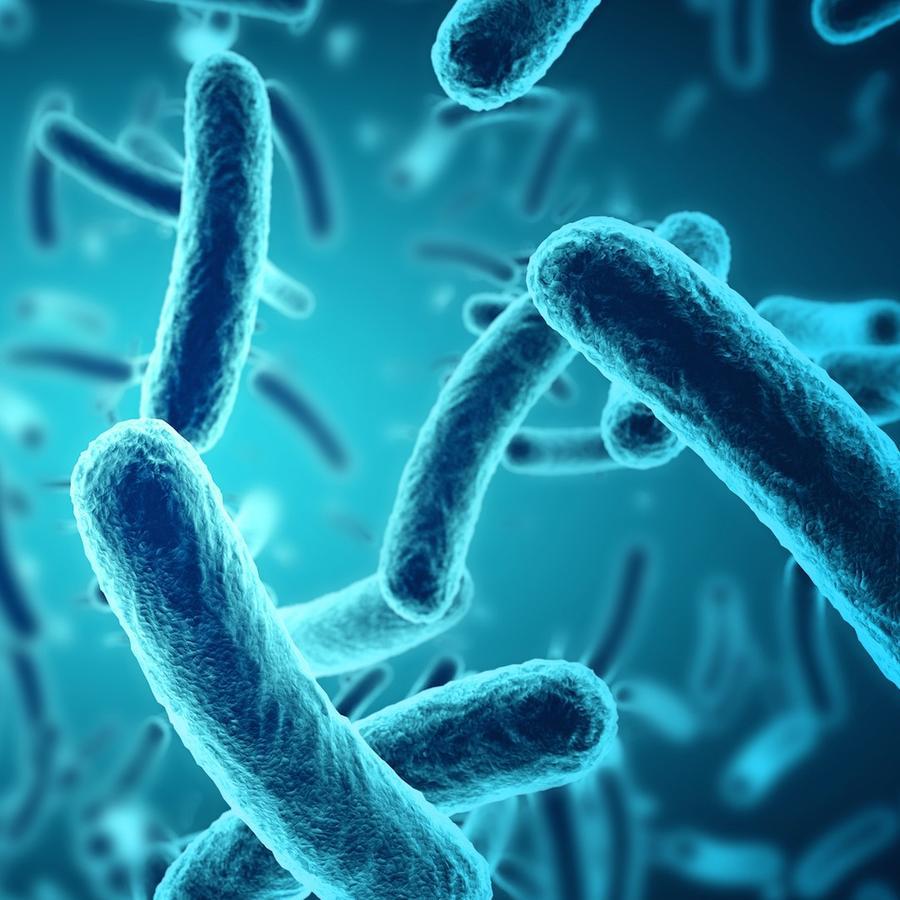 Virus azules alargados