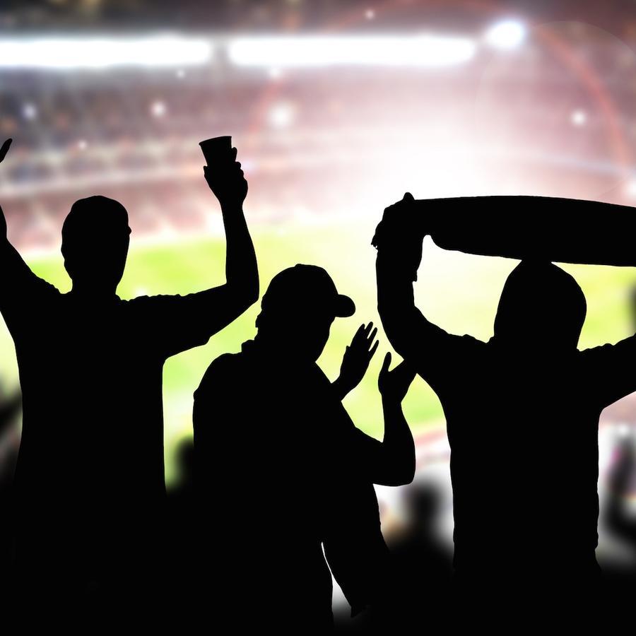 Fanáticos en estadio viendo partido