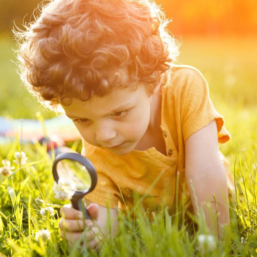 Niño observando flor a través de lupa