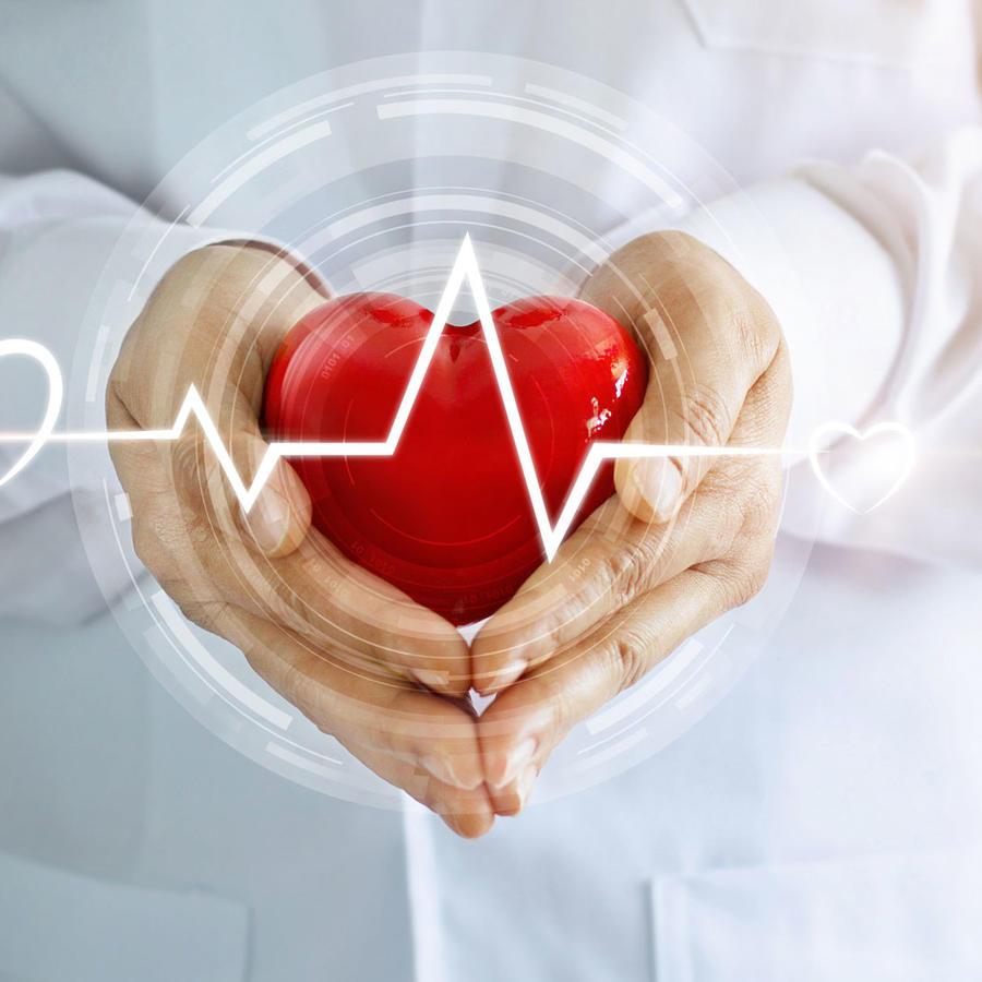 Médico con corazón y electrocardiograma