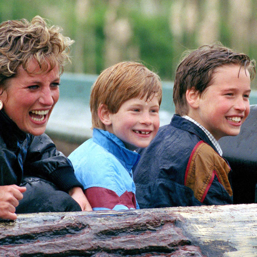 Diana, Harry y William