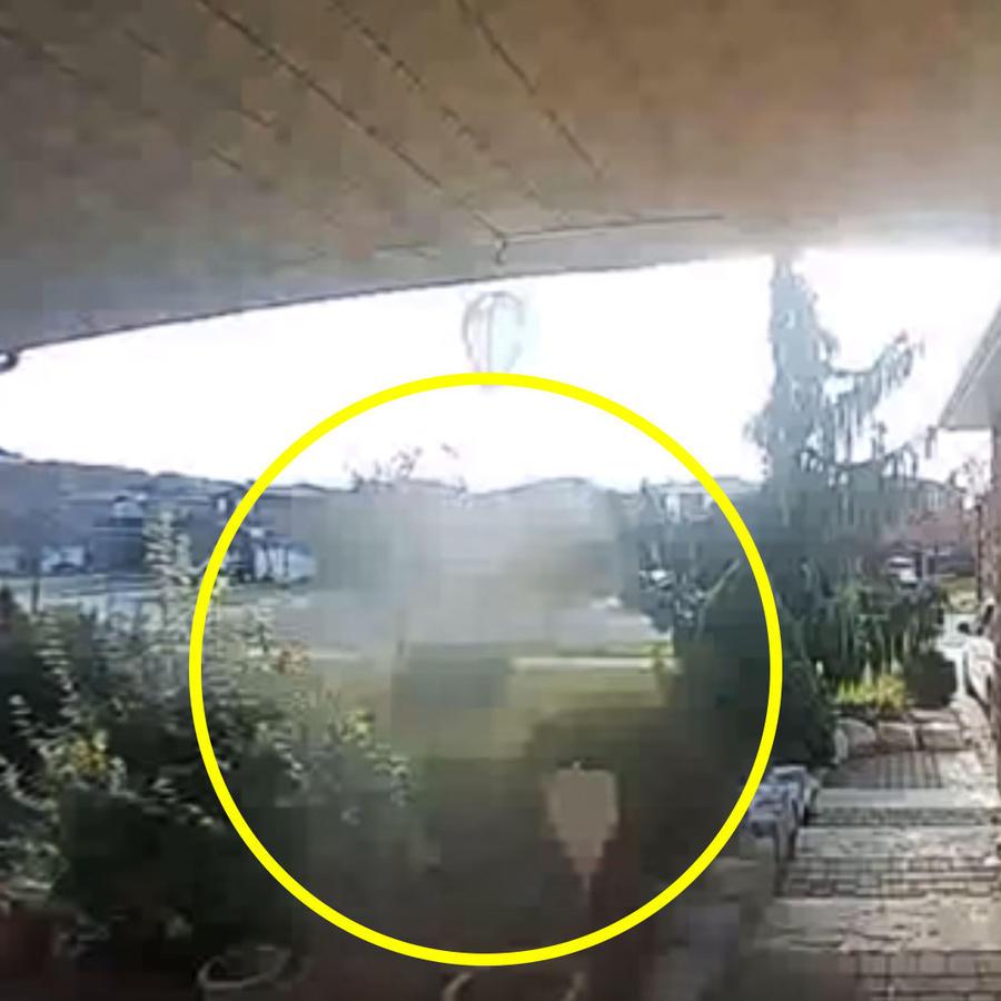 Fantasma de vecino