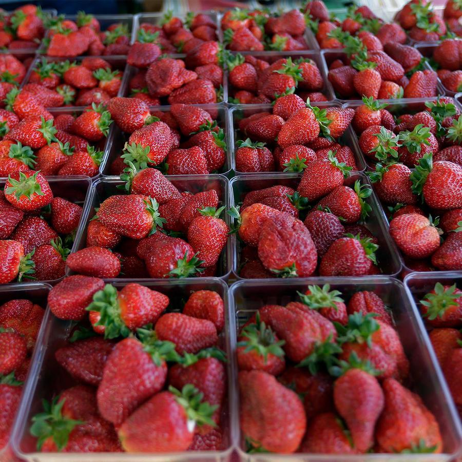 Fresas en un mercado de Carolina de Norte.