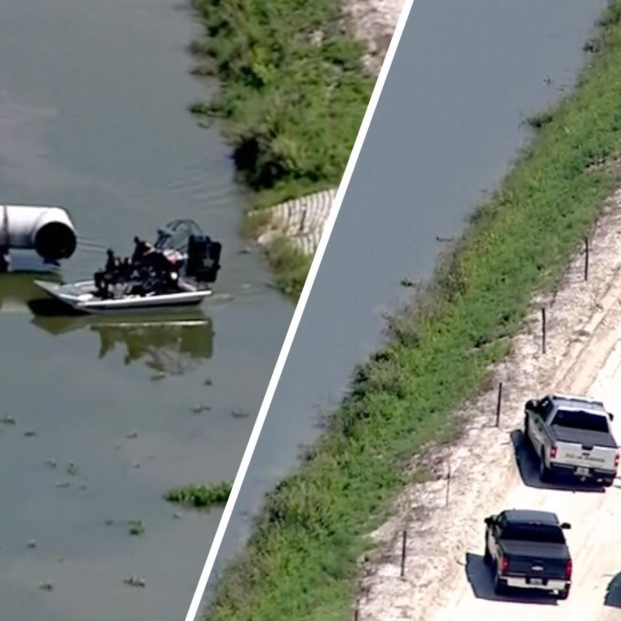 Encuentran hombre muerto junto a un caimán en Florida