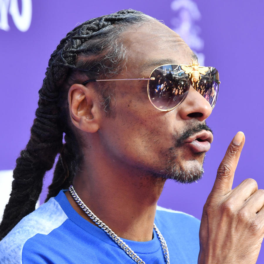 "Snoop Dogg en la Premiere de ""The Addams Family"""
