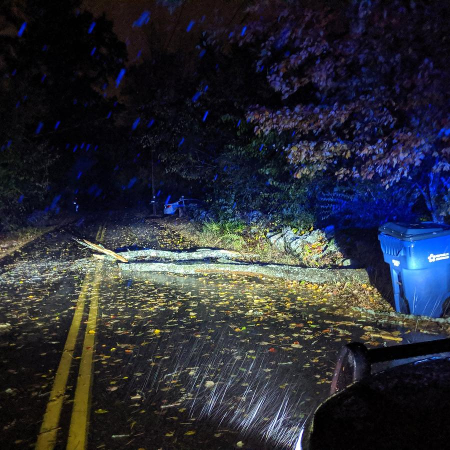 Un árbol caido en una carretera de Massachusetts.