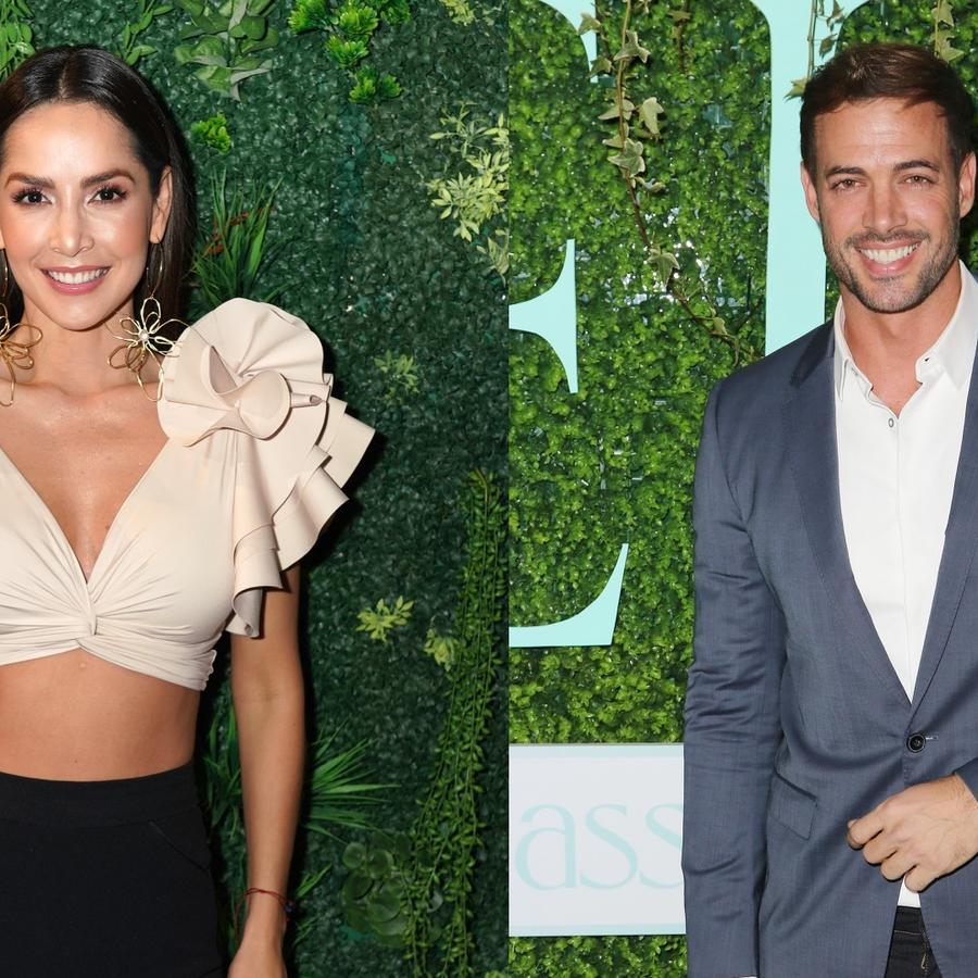 Carmen Villalobos y William Levy