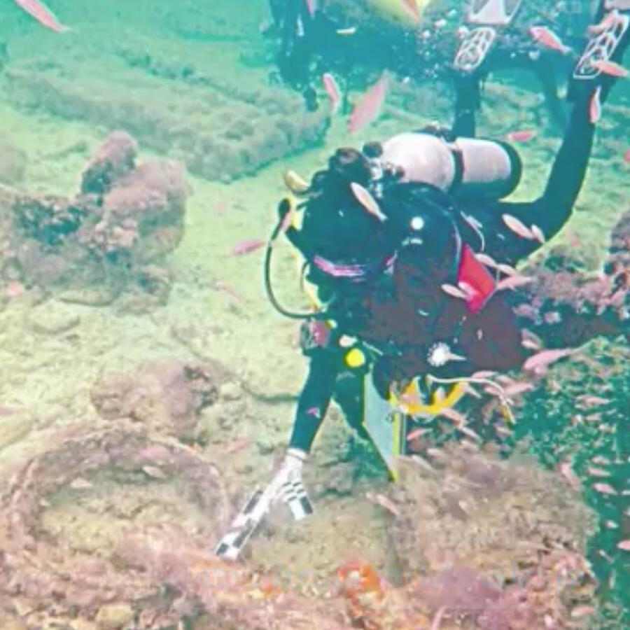 Barcos llevaban esclavos mayas