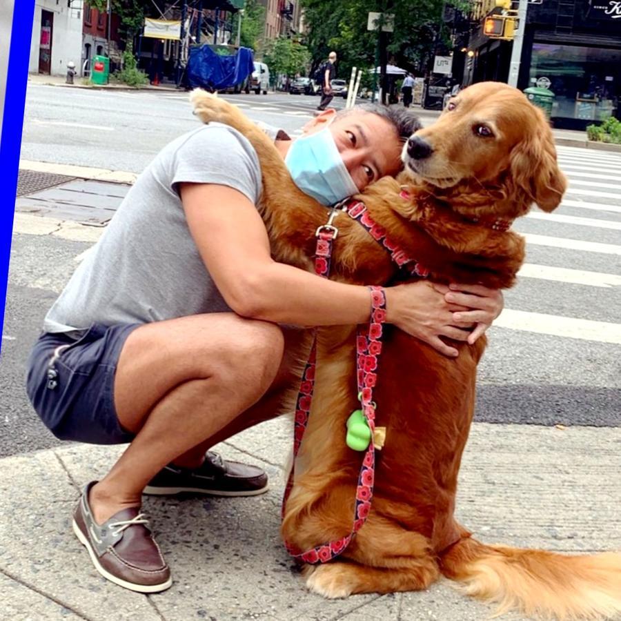 Perrita que da abrazos en Nueva York