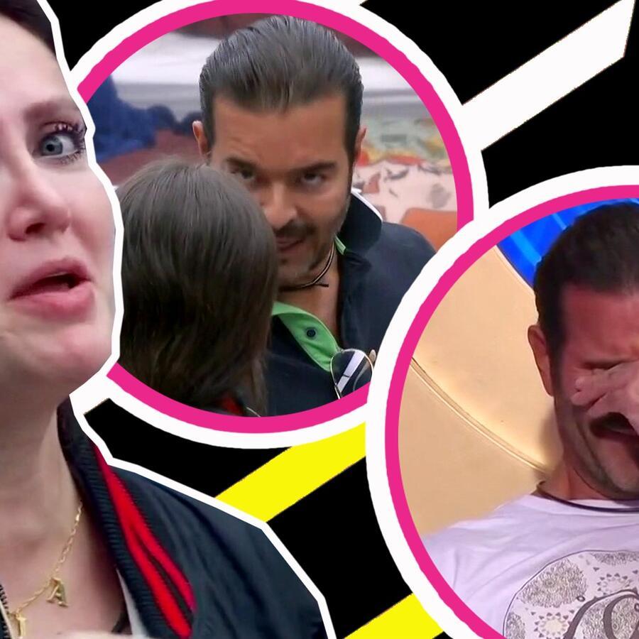 Pablo Montero se desploma en llanto y paga caro su enfrentamiento con Celia Lora