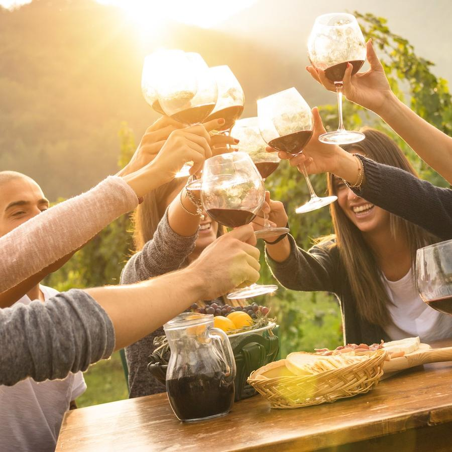 Amigos brindando con vino al aire libre
