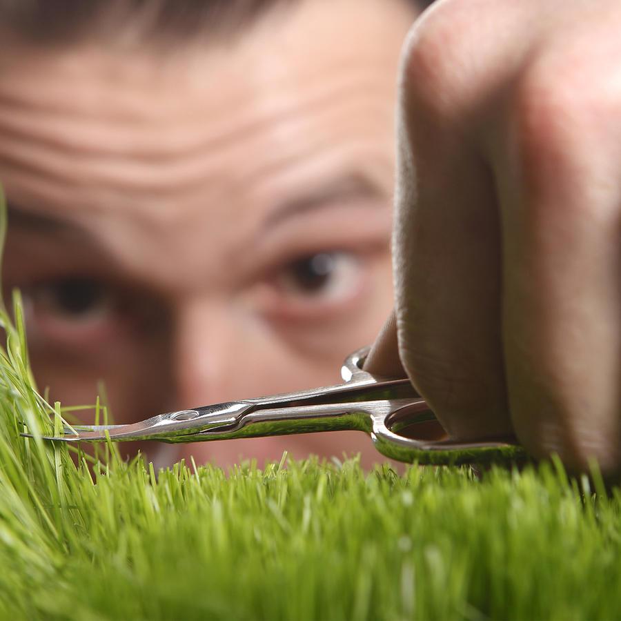 Hombre cortando césped con tijeras