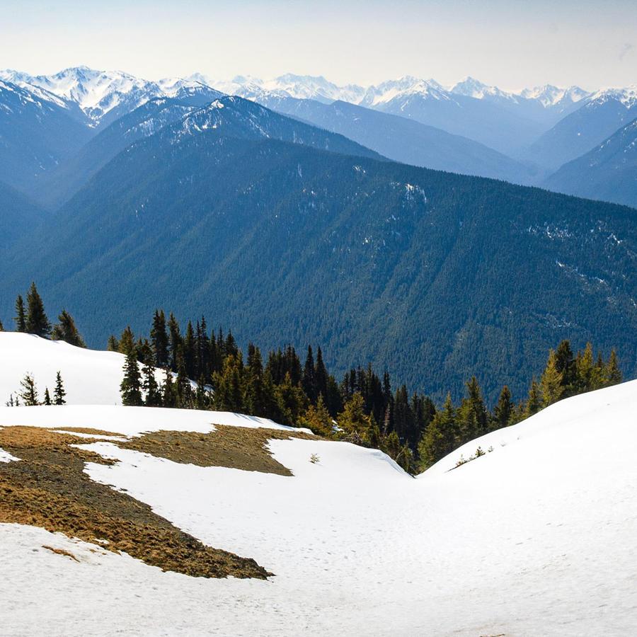 Precipicio, montaña nevada