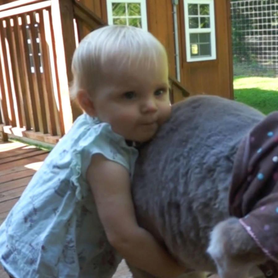 Niña abrazando a un canguro