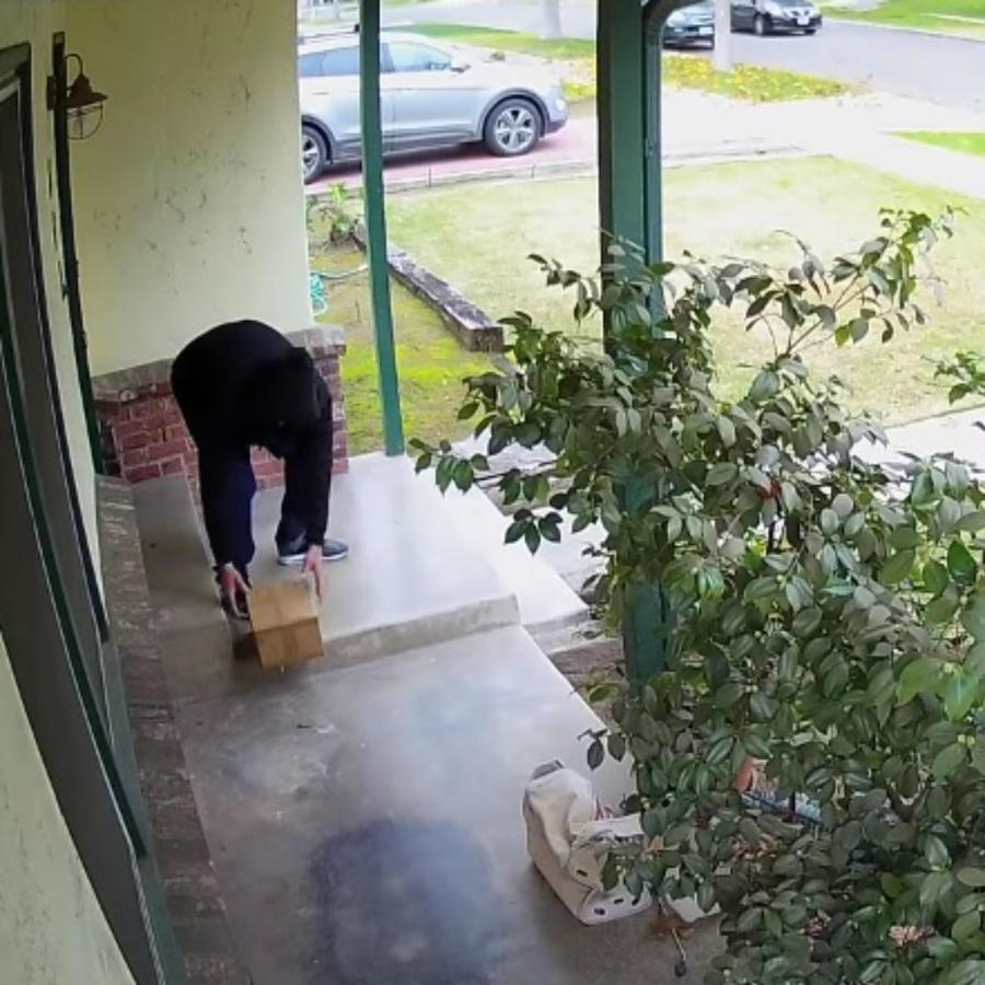 ladrón de paquetes