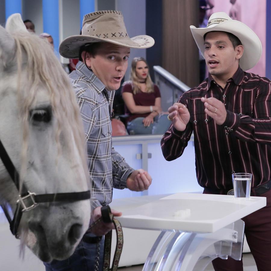 Ricardo y Alejandro son dos vaqueros gays