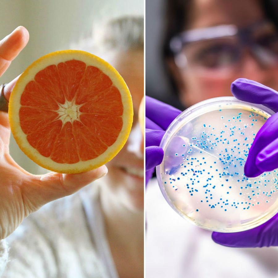 Mujer analizando virus