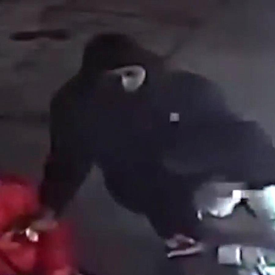 Atacan a mordidas a una mujer en Nueva York